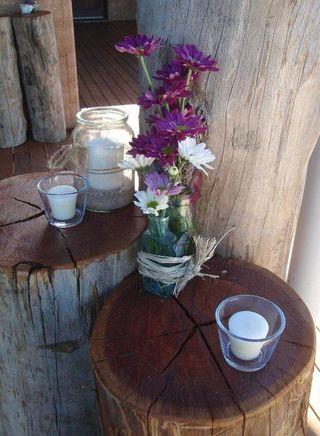 Stumps-newsha_hayter