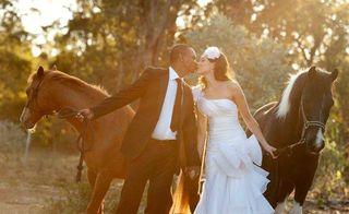 Horses-_rob_alla